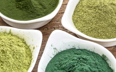Zesty seaweed powder - Ao-Nori